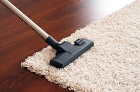 Area Rug Cleaning Tips How To Clean Area Rugs Diy Cleaning Products Pinterest