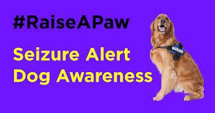 seizure dogs epilepsy foundation