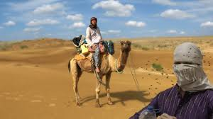 thar desert location attacked by bee swarm in thar desert overnight camel safari in