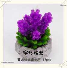 supply small potted plants and flowers plaster craft candle wax