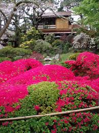 Japanese Tea Garden U2013 San Francisco Ontheporch2