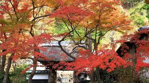 Autumn Colors Garden Design Garden Design With Photo Contest Winnerus Gallery â