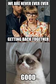 98 best grumpy cat images on pinterest grumpy kitty kitty cats