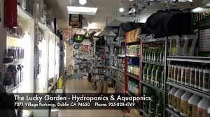 walkthrough lucky garden hydroponics u0026 aquaponics dublin ca