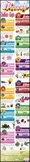 Astrology Sign Astrology Stones Colors Flowers Plants Zodiac Signs