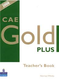 cae gold plus by melina dionisi issuu