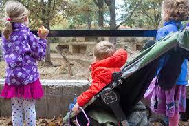 Zoo Lights Columbus Oh by The Cullinan Family November 2014