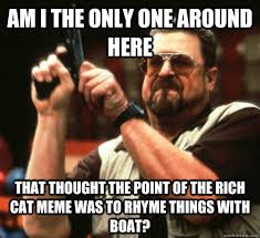 Rich Cat Meme - am i the only one around here that thought the point of the rich