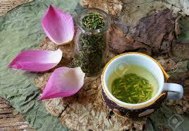 Lotus Flower Tea - collection of lotus pink lotus flower green seed white lotus