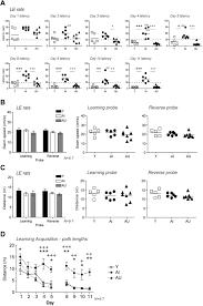glutamate presynaptic vesicular transporter and postsynaptic