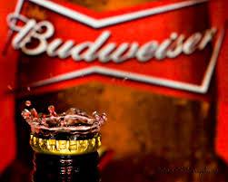 budweiser beer cake busch beer wallpaper wallpapersafari