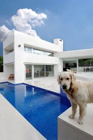 fascinating modern outdoor white blue swimming pool design feats