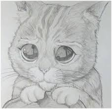 imágenes de gatos fáciles para dibujar imagenes para dibujar gatos a lapiz dibujos de gatos