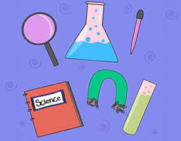 Backyard Science Games 40 Cool Science Experiments On The Web Scholastic