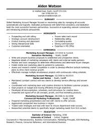 Professional Summary On Resume Examples best account manager resume example livecareer