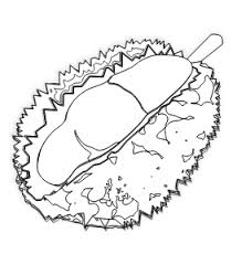 food durian durian coloring book colouring sheet coloring book