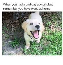 Bad Day Meme - 25 best memes about bad day at work bad day at work memes