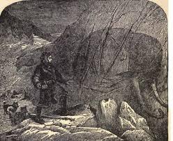 archy mammoth illustrations