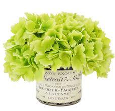 hydrangea bouquet the aisle green hydrangea bouquet in a label pot