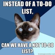To Do List Meme - monday 12 january 2015 meme images 皓 chronic illness cat