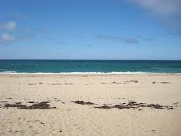 boston u0027s best beaches mapped