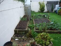 roll out vegetable garden gardening u0026 landscaping gardener garden maintenance dublin 15