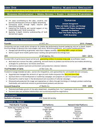 Sales And Marketing Resume Sample by Digital Marketing Resume Example