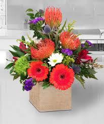 tropical flowers exotic flowers seasonal flowers poway ca