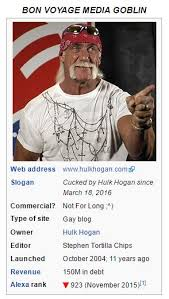 Sex Tape Meme - hulkamina brother hulk hogan s sex tape scandal know your meme