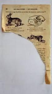 vieux livre de cuisine vieux papiers à scrapper