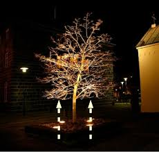 Outdoor Up Lighting For Trees Up Lighting