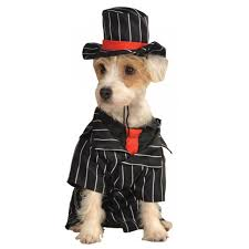 Mobster Halloween Costumes Mob Dog Costume Shipping Baxterboo