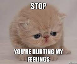 Sad Cat Memes - sadcat weknowmemes generator