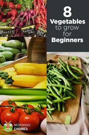 easiest vegetables to grow even if don t know gardening best for