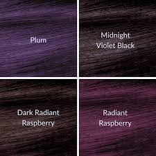 shades of dark purple which new ion color brilliance violet series permanent hair color