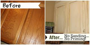 Painted Kitchen Cabinets Before And After by Painting Oak Cabinets Before And After Pictures Floor Decoration