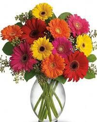 port florist vancouver florist flowers on 1st kitsilano flower shop