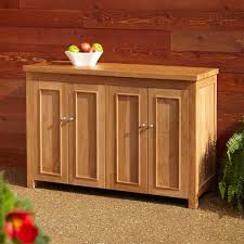 Kitchen Cabinet Door Organizer Shelves Amazing Cabinet Storage Ideas Kitchen Cupboard Racks