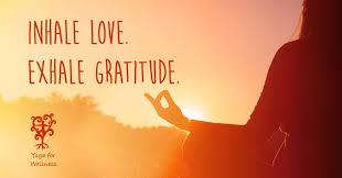 thanksgiving day gratitude for wellness