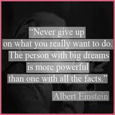einstein quote about success and value it is better to be failing and learning at doing something you