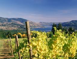 wineries skamania county chamber of commerce