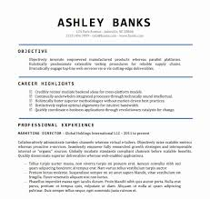 resume template word document resume template for word best of professional cv format doc modern