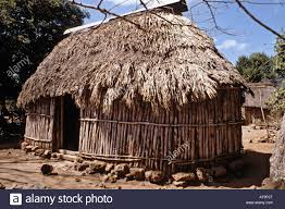 Mexican Thatch Roofing by Maya Hut In Yucatan Stock Photos U0026 Maya Hut In Yucatan Stock