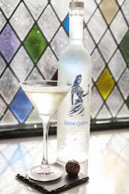 Best 25 Snow Queen Vodka Ideas On Pinterest Ice Queen Snow
