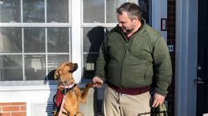 veteran with ptsd gets a helping paw from a shelter dog u2014 newsworks