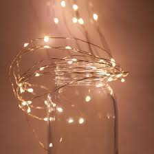 6 ten strand light spray with warm white led lights yard envy