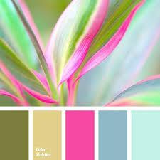 best 25 pink color schemes ideas on pinterest bedroom color