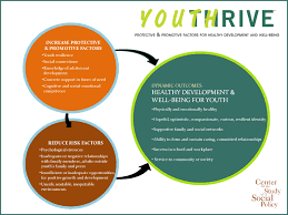 center for the study of social policy youth thrive about