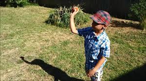 Download Backyard Baseball Backyard Sports Pictures On Mesmerizing Backyard Sports Sandlot