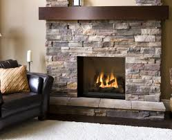 interior design propane fireplace gas insert and wood burning